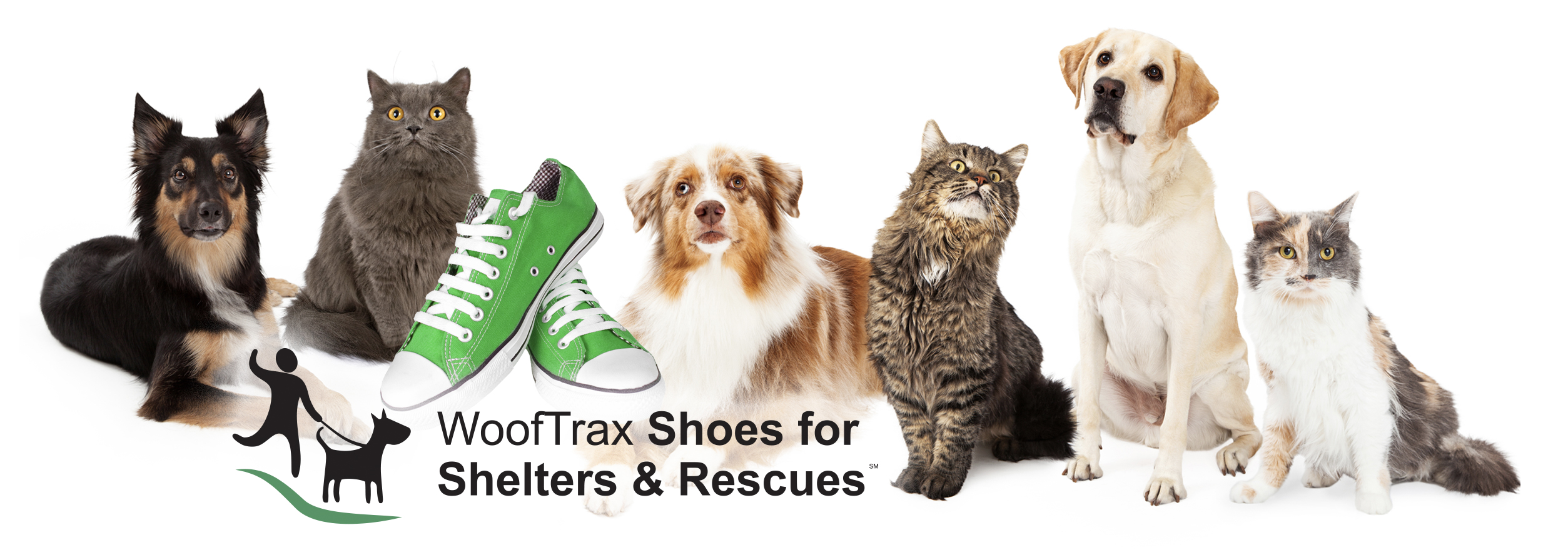 WoofTrax Shoes for Shelters & Rescues in Partnership with Funds2Orgs