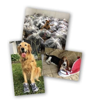 WoofTrax Shoes for Shelters & Rescues